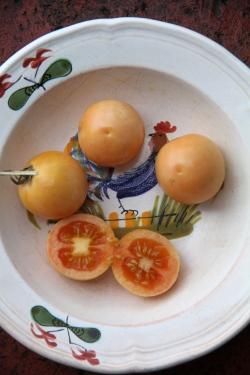 Tänk att vår tomat Ponderosa har blivit symbol för en hållbar livsstil och självhushållning